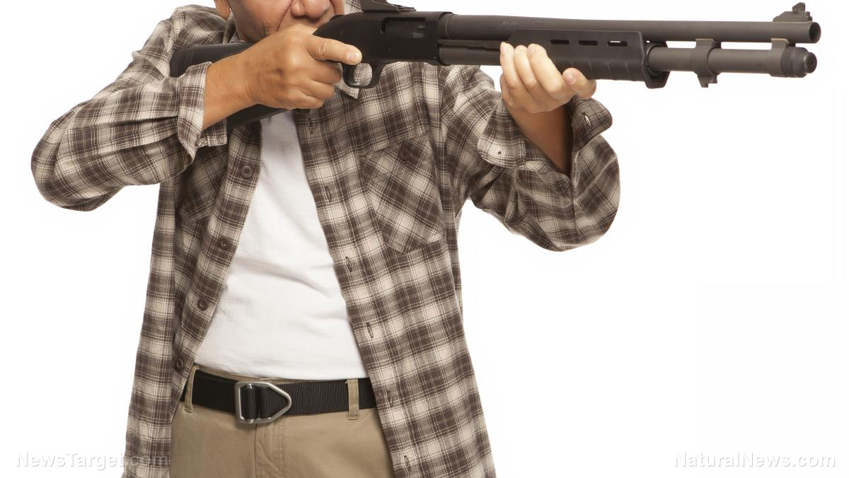 Prepping With Guns 5 Best Shotguns For Home Defense